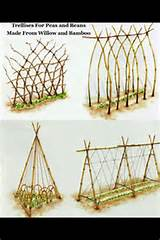 DIY trellis designs | garden ideas | Pinterest