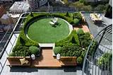 Dachterrasse gestalten – 30 Beispiele für grüne Wohlfühloasen auf ...