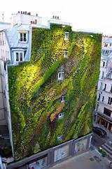 Insanely Creative Vertical Garden Ideas (19)