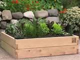Garden Box Design Ideas: Mini Garden Box – Fortikur