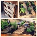 Pallet Herb Garden | Gardening | Pinterest