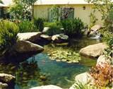 garden pond ideas art to interior design garden pond ideas