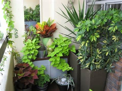 Art and Interior: SMALL SPACES: Balcony Garden