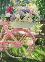 flower bin in painted bike gardening pinterest