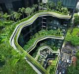 Grünes Dach – gute Isolierung und Nachhaltigkeit
