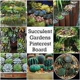 Pinterest Succulent Garden | Flowers And Gardening | Pinterest