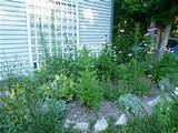 Butterfly Garden Design Instructions; Need to Follow - Modern House ...