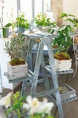 diy home garden ideas 9