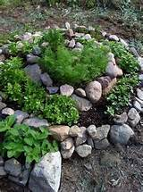 spiral herb garden flowers garden ideas pinterest