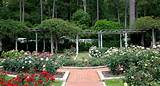 Small Rose Garden Plans Rose garden design