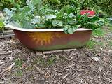 bathtub bed school garden ideas pinterest