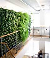 innovative greenery interior design concept meubel interior dan