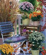Nice spot with Fall Flowers | Gardening ideas | Pinterest