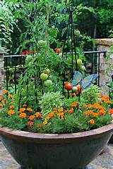 The Graceful Gardener's Containers | The Graceful Gardener