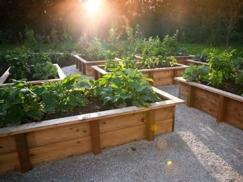 vegetable-garden-designs-raised-bed-ideas-5.jpg