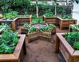 plantenbak voor buiten verhoogde tuinen en bloembak van steigerhout