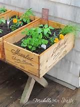 Belle idée de bac à jardiner! | Fleurs et jardinage | Pinterest