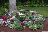 rock gardens outdoor ideas pinterest