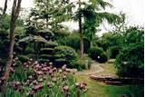 pureland japanese garden and meditation centre simple meditation