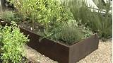 raised bed vegetable garden youtube