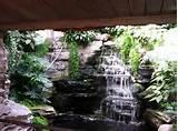 paludarium half water half land not your average home decor