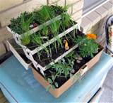 turn an old tackle box into an herb planter with craftzine
