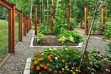 garden fence designs 500x336 garden fence designs