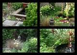 Sweet Home and Garden Carolina: SWEET CAROLINE GARDEN DESIGN