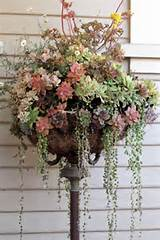 Upcylced Gardening Ideas, Image Source dishfunctionaldesigns.blogspot ...