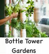 Herb garden idea for indoors.... | Garden Ideas | Pinterest
