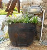 Flower ideas for barrels & planters.