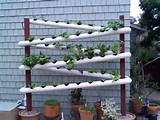 earth gardens sustainable gardening they have a bunch of you tube ...