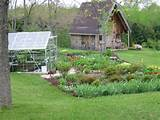 vegetable garden garden ideas pinterest