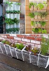 ... Garden Container Ideas | Use hanging shoe racks to grow a vertical
