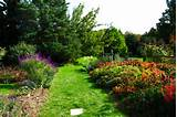Explore Rutgers Gardens — 101 Days of Summer in New Jersey