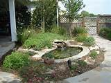 pin by nancy ewald on texas landscape ideas pinterest