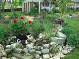 small rock garden ideas - need ideas for rocks birds blooms community ...