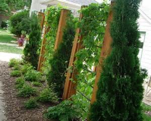 trellis design embellishing your gardens and yards amillionlives