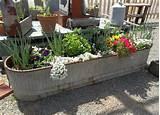 Gardening & Park. Decorating Home Gardening Idea: Charming Garden ...