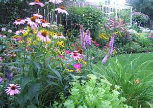 Backyard Perennial Garden - Traditional - Landscape - chicago - by In ...