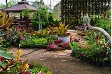 Simple Landscape Designs | garden landscape design | Pinterest