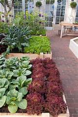 gardens ideas beds vegetables raised beds french doors vegetables