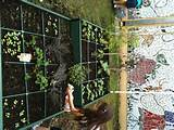 pin by jessica emerson on school garden ideas pinterest