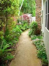 Small Side Yard Gardens