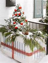 winter container garden ideas outdoortheme com