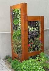 vertical garden gardens gardening ideas pinterest