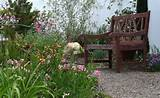 cottage garden shabby chic landscape san diego by designs by