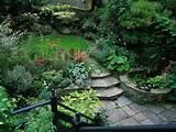 Urban Gardening Ideas : HGTV Gardens