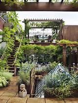 roof garden2