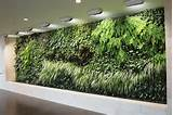 ... garden indoor designs indoor vertical garden indoor vertical garden
